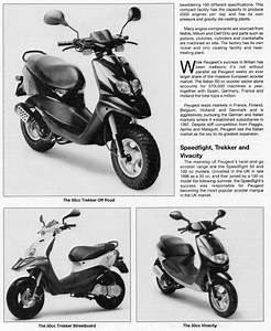 Peugeot Vivacity 50cc 100cc Digital Workshop Repair Manual