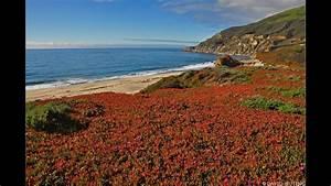 U0026quot The California Coast U0026quot   W Music  1 Hr Healing Nature