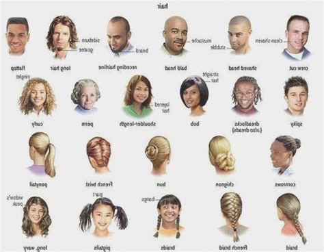 Hair Names by Different Names Of Hairstyles Hairstyles By Unixcode