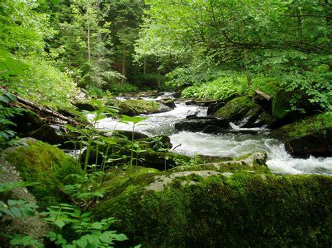 penthouse ferienwohnung zum sonnenhuegel bayerwald bayern mit badesee rad und wanderwege