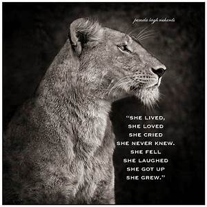Pamela Leigh Richards » B-W-Lioness-Pamela-quote-1