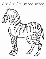 Zebra Coloring Pages Printable Sheets Colouring Animal Twistynoodle Clipart Preschool Noodle Printables Popular sketch template