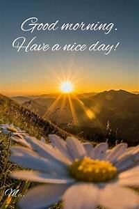 60 beautiful morning a day images