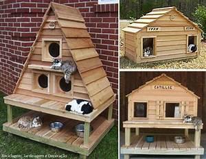Maison Pour Chat Extérieur : delicieux maison exterieur pour chat 8 abri pour chat ~ Premium-room.com Idées de Décoration