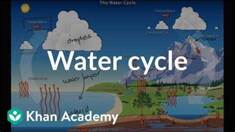 water cycle ecology khan academy youtube