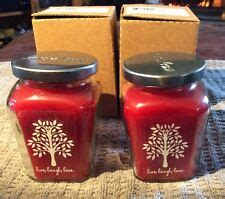 Home Interiors Candles Baked Apple Pie by Home Interior Apple Ebay
