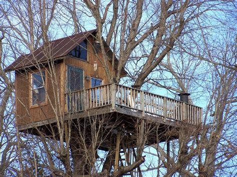 cabin design treehouse rentals treehouse vineyards