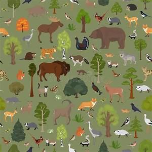 Cartoon On Net  Cartoon Forest Ecosystem Images