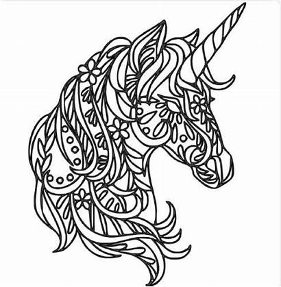 Unicorn Skull Sugar Intricate Coloring Pages Decal