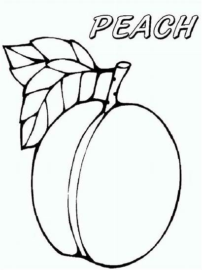 Peach Coloring Pages Fruits Fruit Printable Recommended