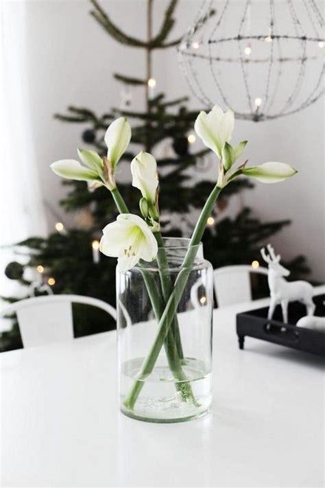 Edle Weihnachtsdeko Fenster by Weisse Amaryllis Als Wundersch 246 Ne Weihnachtsdekoration