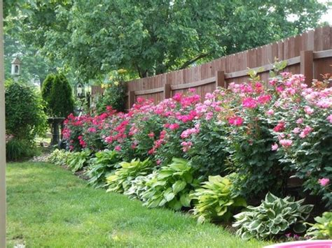 small bushes for flower beds great decorations landscaping ideas for small flower beds this for all