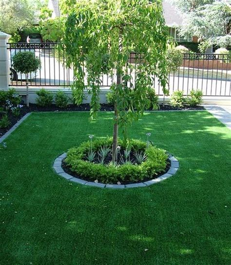 front yard tree ideas front yards trees and yards on pinterest