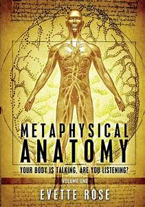 Metaphysical Anatomy : Evette Rose : 9781482315820