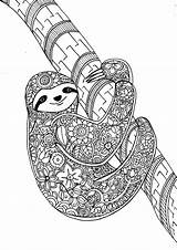 Coloring Therapy Pages Animal Sloth sketch template
