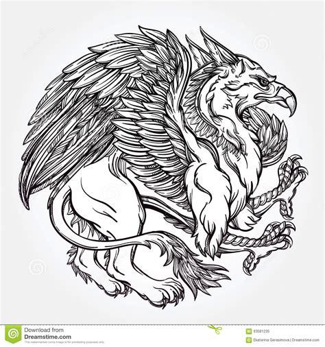 griffin beast illustration stock vector illustration