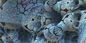 Microscopic Bug Bacteria  U00b7 Free Image On Pixabay