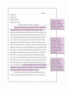 Health Care Essays  Essay About Health also Critical Essay Thesis Statement Obesity Essay Thesis     Essay On Science And Society