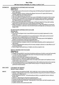 optimization manager resume samples velvet jobs With resume optimization service
