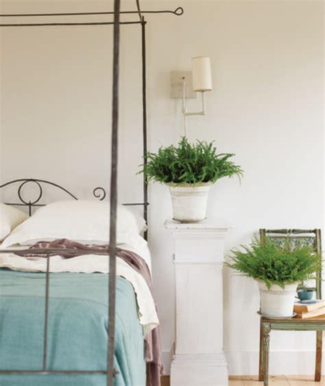 plantes dépolluantes chambre à coucher la plante verte d 39 intérieur archzine fr
