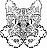 Pages Coloring Cat Cats Animal Halloween Blank Books Mandala Adult Adults Sugar Printable Kittens Critters sketch template