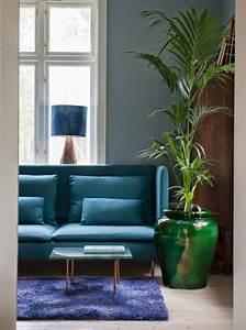 Plante De Salon : plante d 39 int rieur originale les bonnes id es c t maison ~ Teatrodelosmanantiales.com Idées de Décoration