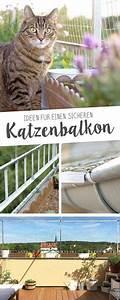 Katzennetz Balkon Unsichtbar : komplett offenen balkon ohne bohren vernetzen bilder gesucht seite 2 katzen forum cat ~ Orissabook.com Haus und Dekorationen