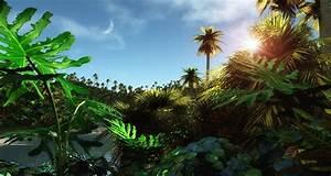 HD Wallpapers Nature 1080p - WallpaperSafari