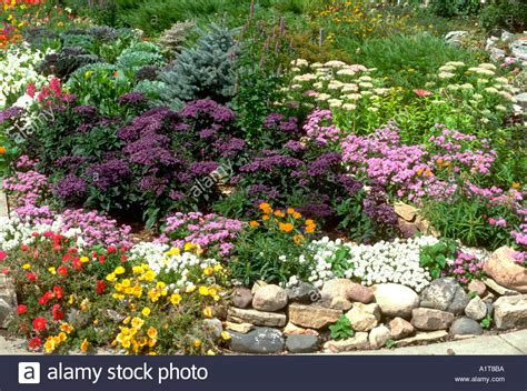 beautiful annual and perennial flower garden lined with a