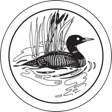 Loon Drawings Free