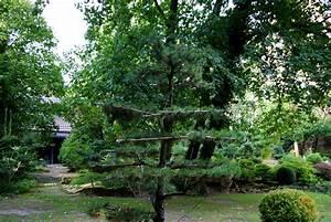 Gartengestaltung Feng Shui : feng shui garten bilder harmonie f rs auge ~ Markanthonyermac.com Haus und Dekorationen