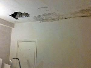 Fissure Au Plafond : conseils r novation ma onnerie enlever gouttelettes de ~ Premium-room.com Idées de Décoration