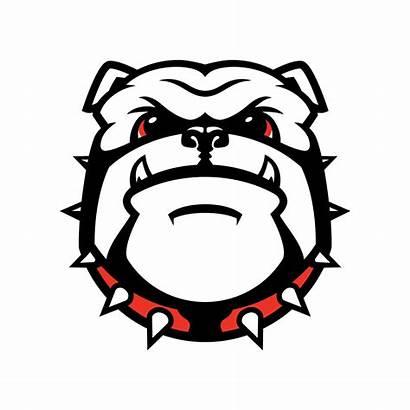 Bulldog Georgia Bulldogs Uga University Clipart Football
