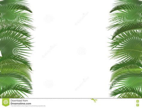 tropical poster template palm plant tree leaves background template exotic