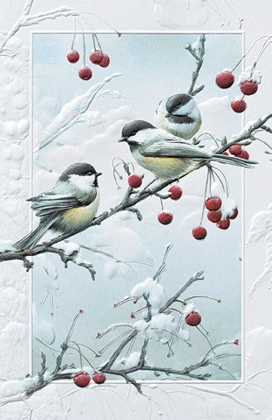 cheeky chickadees chickadee boxed christmas cards