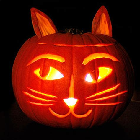 cat pumpkin ideas 6 cat themed jack o lantern ideas for you and your kids catster