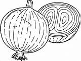 Onion Coloring Onions Drawing Vegetables Vegetable Coloringbay Getdrawings Popular Carrots Tomatoes sketch template