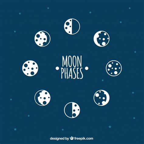 Moon Phases Background Background Of Moon Phases Vector Free