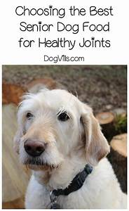 Best senior dog food for healthy joints for Best senior dog food