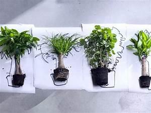 Porte Plante Interieur Design : les plantes d 39 int rieur s 39 invitent dans notre d coration ~ Teatrodelosmanantiales.com Idées de Décoration