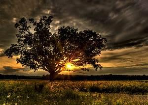 Sunset - Beautiful Nature Photo (23473749) - Fanpop