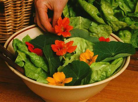 les fleurs comestibles en cuisine les fleurs comestibles