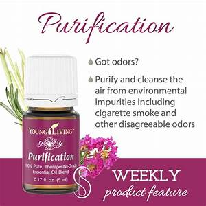 Product Feature: Purification by Lynn | Simply Serendipity ...