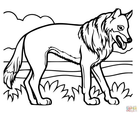 Wiley Coyote Coloring Pages Printable Wiley Best Free
