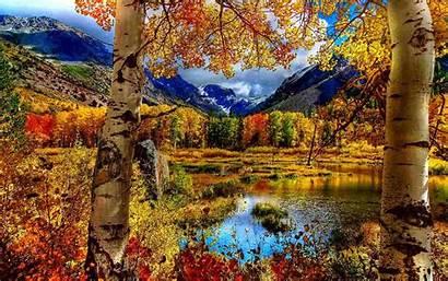 Fall Desktop Autumn Season Backgrounds Forest Wallpapertip
