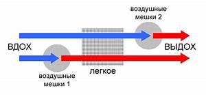 Дыхание углекислым газом при гипертонии