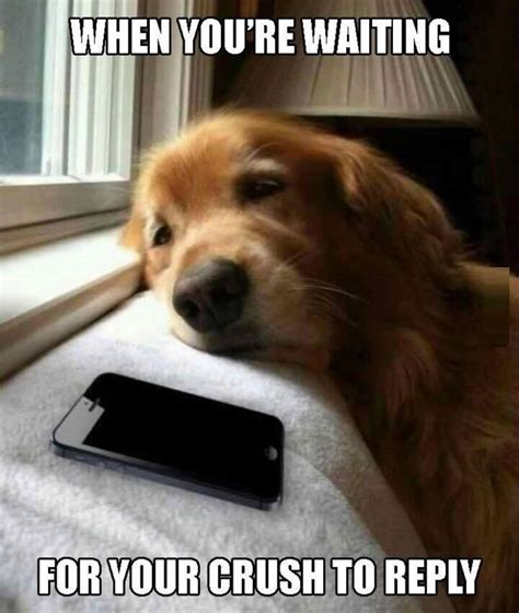 waiting by the phone meme i totally agree waiting for bae to text back like pic