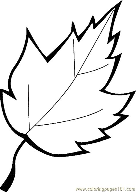 large leaf template leaf coloring page 13 printable coloring page for and adults thanksgiving