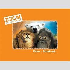 Zoom Erlebniswelt  Weltreise Durch Die Zoom (1 Nacht