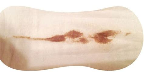 Light Brown Discharge No Period by Brown Stringy Discharge Pregnancy Period Light 9